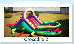 Crocodile Jumping Castle Ages 2-12 years Size: 4 X 10m R550 Tuesday to Thursday R550 Friday to Monday